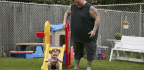 I Wanted A Baby:' Single Men Are Increasingly Having Biological Children Via Surrogacy