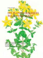 Dix plantes magiques pour votre santé