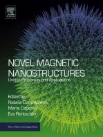 Novel Magnetic Nanostructures