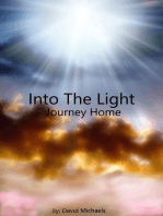 Into The Light, Journey Home
