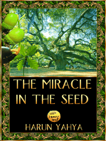 The Miracle in the Seed