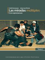 Las miradas múltiples: El cine regional peruano. Tomo I