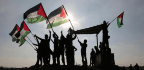 Can Young Palestinians' Rejection of PA Lead to Peace?