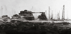 Tiger vs T-34