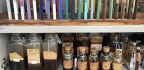 The Harvard Color Detectives
