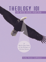 Theology 101 in Bite-Size Pieces
