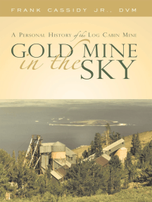 Gold Mine in the Sky: A Personal History of the Log Cabin Mine