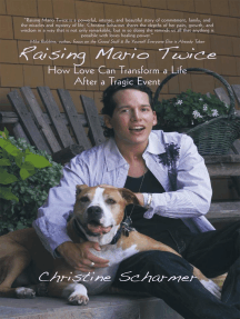 Raising Mario Twice: How Love Can Transform a Life After a Tragic Event