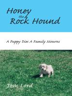 Honey the Rock Hound