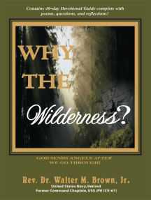 Why the Wilderness?: God Sends Angels <I>After</I> We Go Through!