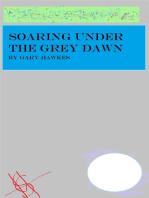 Soaring Under the Grey Dawn