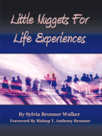 Little Nuggets for Life's Experiences