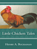Little Chicken Tales