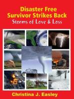 Disaster Free Survivor Strikes Back