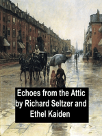 Echoes from the Attic