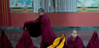 Chinese Filmmaker Tells Story Of Child Monks In Nepal - They Fight, Swear And Are Addicted To Cellphones