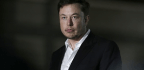 The Elon Musk Impersonators of the Internet