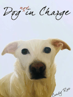 Dog Not in Charge
