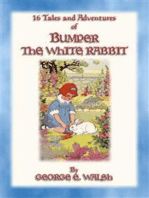 BUMPER THE WHITE RABBIT - 16 illustrated adventures of Bumper the White Rabbit