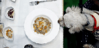 Why Is Buying Pet Food So Hard?