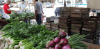 Farmers Markets and SNAP