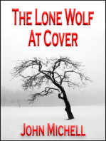 The Lone Wolf At Cover