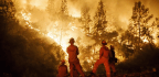 California Blazes Take A Grim Toll On Firefighters And Other Responders