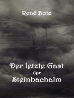 Der letzte Gast der Steinbachalm