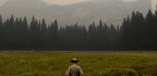 Yosemite Valley Reopens As Firefighters Strengthen Containment Of Ferguson Fire