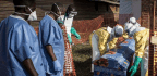 Ebola Outbreak Shaping Up As Most Dangerous Test Of World's Ability To Respond Since Global Crisis