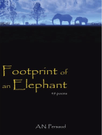Footprint of an Elephant