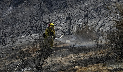 Editorial Even As California Gets Hotter And Drier Lawmakers