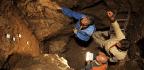 Ancient Bone Reveals Surprising Sex Lives Of Neanderthals