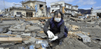 Japan's Stoicism In The Face Of Natural Disaster, And The Tragedy Of The Tsunami-hit School
