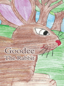 Goodee the Rabbit