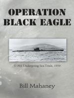 Operation Black Eagle