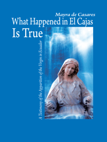 What Happened in El Cajas Is True: A Testimony of the Apparition of the Virgin in Ecuador