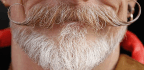 The Racially Fraught History of the American Beard