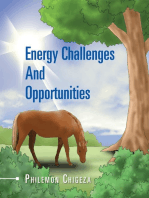 Energy Challenges and Opportunities