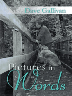 Pictures in Words