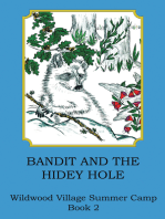 Bandit and the Hidey Hole