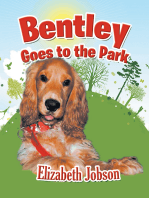 Bentley Goes to the Park