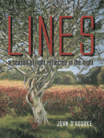 Lines - a Season of Light, Reflected in the Night
