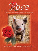 Rose - Postcards and Thoughts from a Beautiful Pig