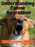 Understanding Canine Aggression