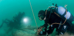 Spices, Ceramics Found Aboard 400-Year-Old Portuguese Shipwreck
