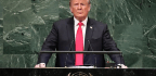 Trump's Mystifying Victory Lap at the UN