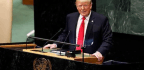 Who's Laughing Now? The Science Behind The UN's Reaction To Trump | Sophie Scott