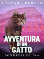 Avventura di un gatto