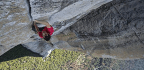 Free Solo Is a Staggering Documentary About Extreme Climbing